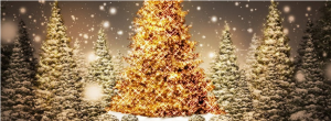 kerstcover